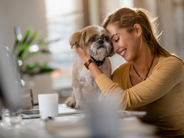 Pet Friendly Employee Benefits Can Help with Recruitment and Retention